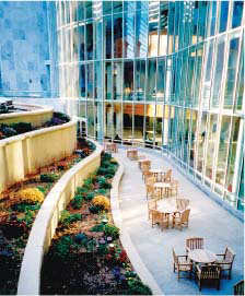 The Gonda Building and patio, Mayo Clinic, Rochester, MN.